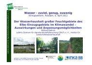 Der Wasserhaushalt großer Feuchtgebiete des Elbe-Einzugsgebiets ...