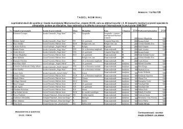 2007 - 128 Hot ANEXA(1).pdf