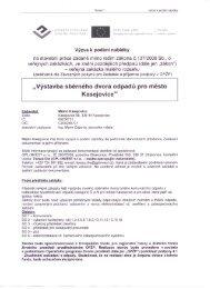 Výzva k podání nabídky k veřejné zakázce malého ... - Kasejovice