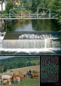 Das Riesengebirge (polnisch Karkonosze ... - Hotel Riedel - Seite 4