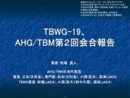 AHG/TBM 第2回会合報告 - 那珂核融合研究所