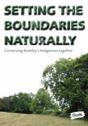 Conserving Bromley's hedgerows together - Bromley Partnerships