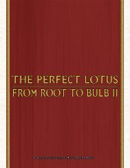 The PerfecT LoTus from rooT To BuLB II - Exalted, character sheets