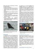 Ballenas francas australes en Chile - WDCS - Page 2