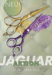 SET SYNERGY DESIGN - Jaguar