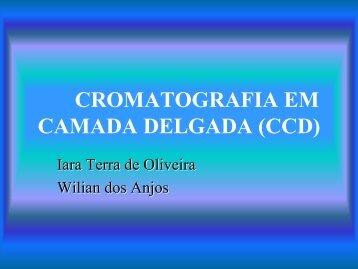 Cromatografia em camada delgada LIC 2004 - cempeqc - Unesp