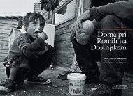 Doma pri Romih na Dolenjskem.pdf
