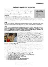 Studieretning 2 Matematik A – fysik B – kemi B/innovation C