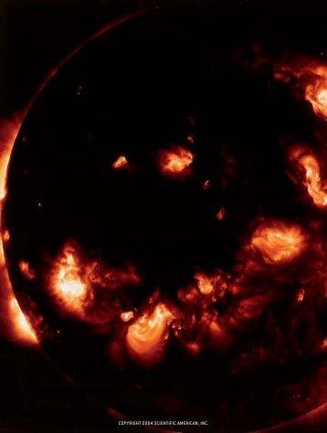 The Stellar Dynamo - Scientific American Digital
