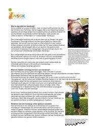 Wat is eigenlijk een handicap? - Nederlandse Stichting voor het ...