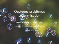 Quelques problèmes d'optimisation - Laboratoire de mathématiques ...
