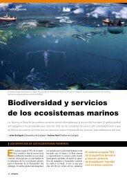 Biodiversidad y servicios de los ecosistemas marinos