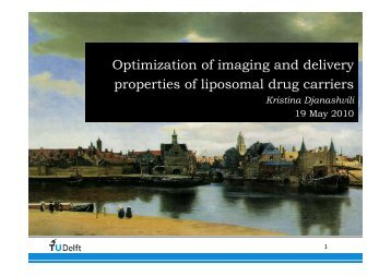 Optimization of imaging and delivery properties of liposomal ... - Encite