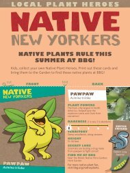 natiVe plants rule this suMMer at bbG!