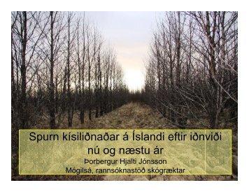 Eftirspurn kísilmálmsiðnaðar eftir iðnviði á Íslandi í dag og horfur ...