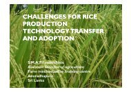 challenges for rice production technology transfer and adoption