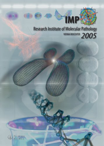 IMP Research Report 2005