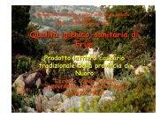 Relazione Firinu 2 - Asl Olbia