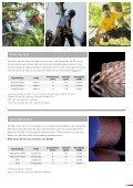 BAUMPFLEGE - Gate24.ch - Seite 7