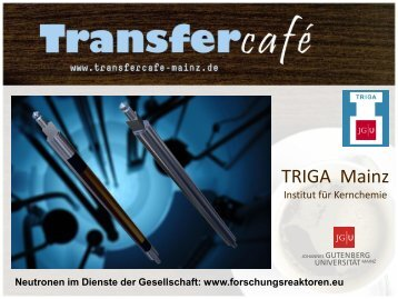 TRIGA Mainz