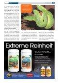 Grün und blau - Tropenparadies - Page 2