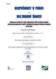 Propozice k soutěži - Bezpečnost a ochrana zdraví ve školách ...