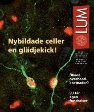 LUM nr 7 - 30 augusti (PDF 1 MB - Nytt fönster) - Humanekologi ...
