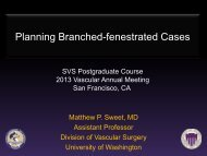 Planning Branched-fenestrated Cases - VascularWeb