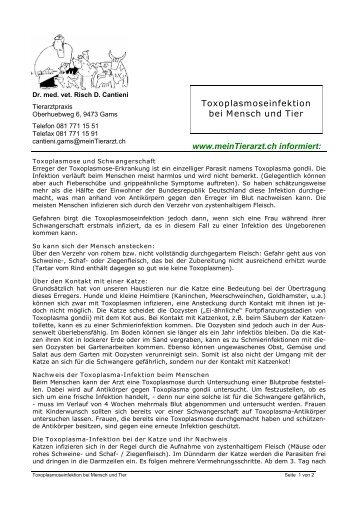 Toxoplasmose und Schwangerschaft - Risch Cantieni ...