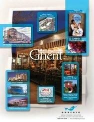 View the pdf report - Norfolk Development