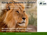 König der Savanne in Gefahr! - SAVE Wildlife Conservation Fund