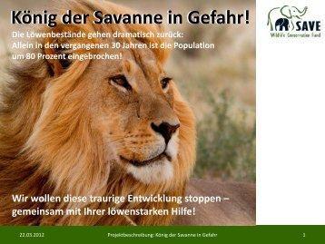 König der Savanne in Gefahr! - SAVE Wildlife Conservation Fund