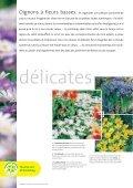 Les merveilles du printemps Les merveilles du printemps - Page 2