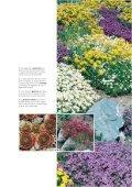 Les merveilles du printemps Les merveilles du printemps - Page 4