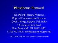 Phosphorus Removal