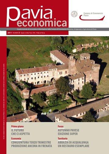 Scarica il file completo - CCIAA di Pavia