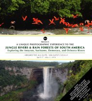 jungle RiveRs & Rain FoRests oF south ameRica jungle RiveRs ...