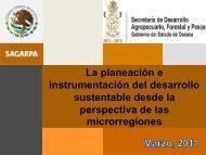 La planeación e instrumentación del desarrollo sustentable desde