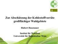 Hasenauer_Zur Abschätzung der Kohlenstoffvorräte.pdf