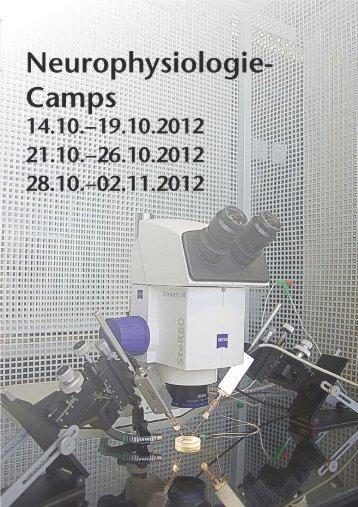 Neurophysiologie Camps - XLAB