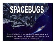 Space flight alters bacterial gene expression and ... - Mbio.ncsu.edu