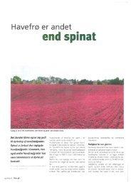 media/Havefrø er andet end spinat.pdf - Jensen Seed