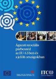 Sectoral-Social Dialogue in E... - Villamosenergia-ipari Dolgozók ...