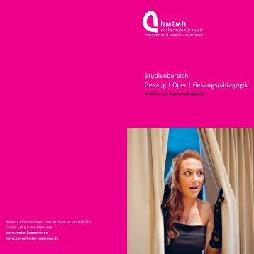 Studiengangsflyer - Hochschule für Musik, Theater und Medien ...