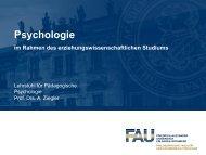 Folien der Einführungsveranstaltung (pdf) - Lehrstuhl Pädagogische ...