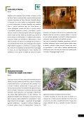 Itinerari didattici Valle del Chiese - Trentino Grande Guerra - Page 5