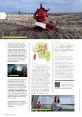 Radwandern in der Lausitz - Lausitzer Seenland - Seite 6