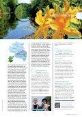 Radwandern in der Lausitz - Lausitzer Seenland - Seite 7