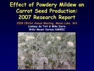 Presentation on Powdery Mildew in carrot seed