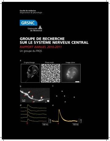 Rapport annuel complet (version Web) - GRSNC - Université de ...